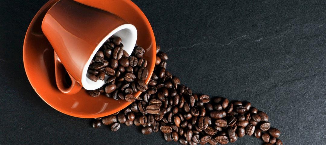 Nespresso s'engage vers la neutralité carbone
